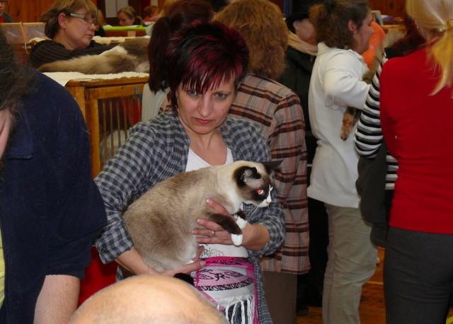 Oksanka na Freya Cat Show 2010